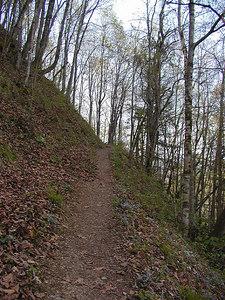 Sidehilling up the gentle grade of Chestnut Top GSMNP March 07