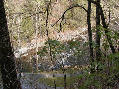 View of LIttle River from Chestnut Top Trail  March 07 GSMNP