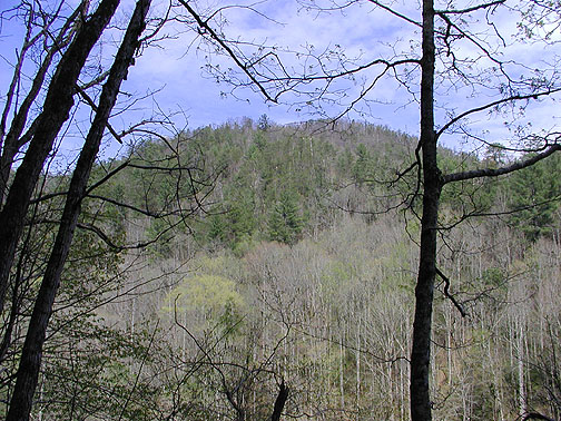 View of Roundtop from the Chestnut Top Trail<br /> GSMNP March 07