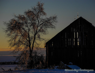 Setting Christmas Eve sun sparkles through ice-covered branches, icicles and lightning rods of a Kochville Township barn.