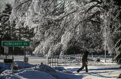 Surrounded by ice-covered branches along Midland road near McCarty, Dave Sanders, 55, walks up his driveway after placing trash at the curb before going to work on Christmas Eve.
