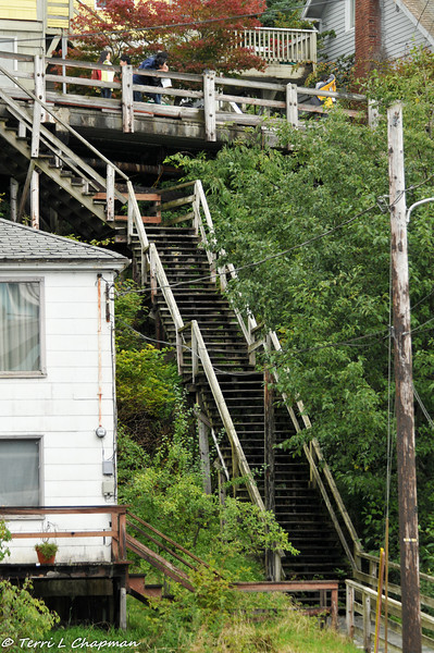 Chapman Street is actually stairs!