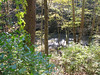 10-21-06 Clifton Gorge SNP 20 Little Miami River