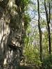 10-21-06 Clifton Gorge SNP 19