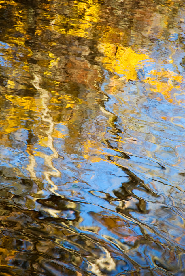 Reflections of fall leaves on Little River, Great Smoky Mountains National Park.