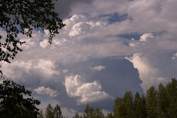 Late afternoon summer clouds from my back porch in Anchorage, Alaska.