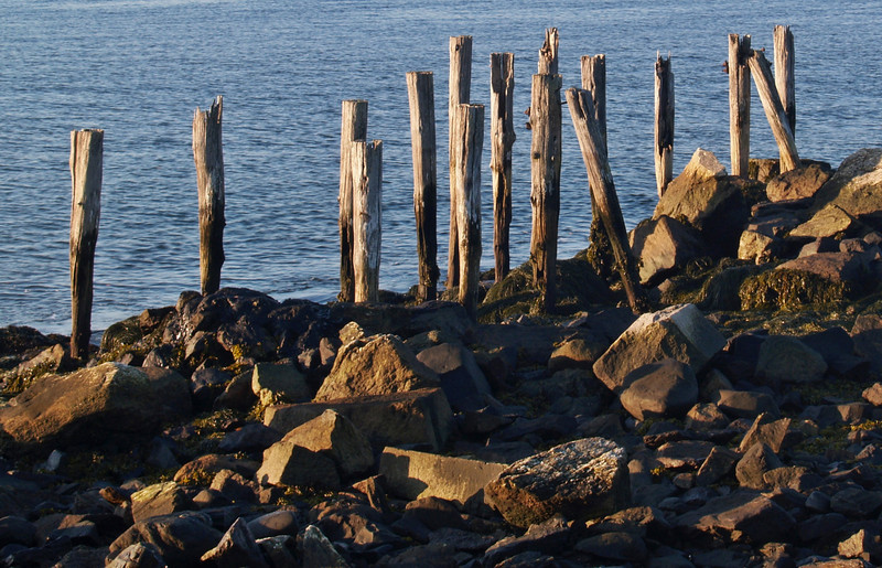 Old Pilings at Fort Stark, NH
