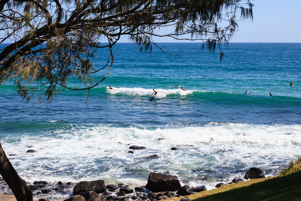 "Burleigh Heads National Park, with Tallebudgera Creek, Gold Coast, Queensland, AUD. Wednesday 30 November 2016. Photos by Des Thureson - <a href=""http://disci.smugmug.com"">http://disci.smugmug.com</a>."