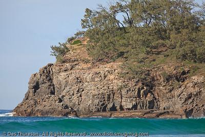 Alexandria Bay - Birds & Bays: Beautiful Noosa National Park, Sunshine Coast, Queensland, Australia; Tuesday 29 June 2010.