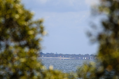 Boondall Wetlands Reserve - Nudgee Beach Aspect; Wednesday 16 November 2016. Photos by Des Thureson - http://disci.smugmug.com
