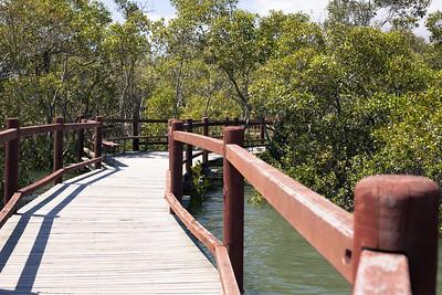 """Alternate Processing: """"Color Pop - Pretty Presets"""" - Boondall Wetlands Reserve - Nudgee Beach Aspect; Wednesday 16 November 2016. Photos by Des Thureson - http://disci.smugmug.com"""