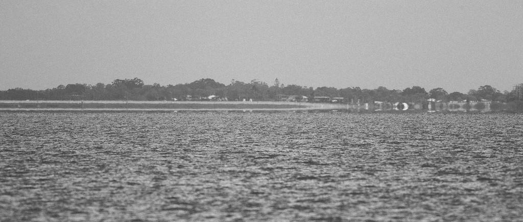 """VSCO Film Preset: """"C - TRI-X⁺³ ++"""" - Boondall Wetlands Reserve - Nudgee Beach Aspect; Wednesday 16 November 2016. Photos by Des Thureson - <a href=""""http://disci.smugmug.com"""">http://disci.smugmug.com</a>"""