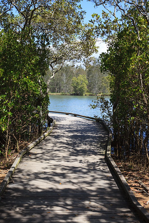 Boondall Wetlands - Nudgee Beach Reserve
