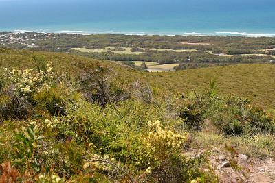 Mount Coolum, 15 September 2008