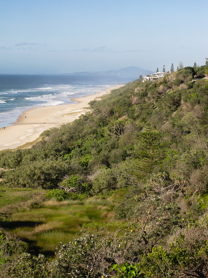 Sunshine Beach - Flowers, Trees & Landscapes - Noosa National Park. Point and Shoot Camera pics.