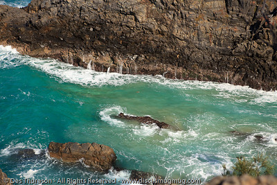 A brave turtle takes on Hells Gates - Noosa National Park, Sunshine Coast, Queensland, Australia; 13 July 2010.