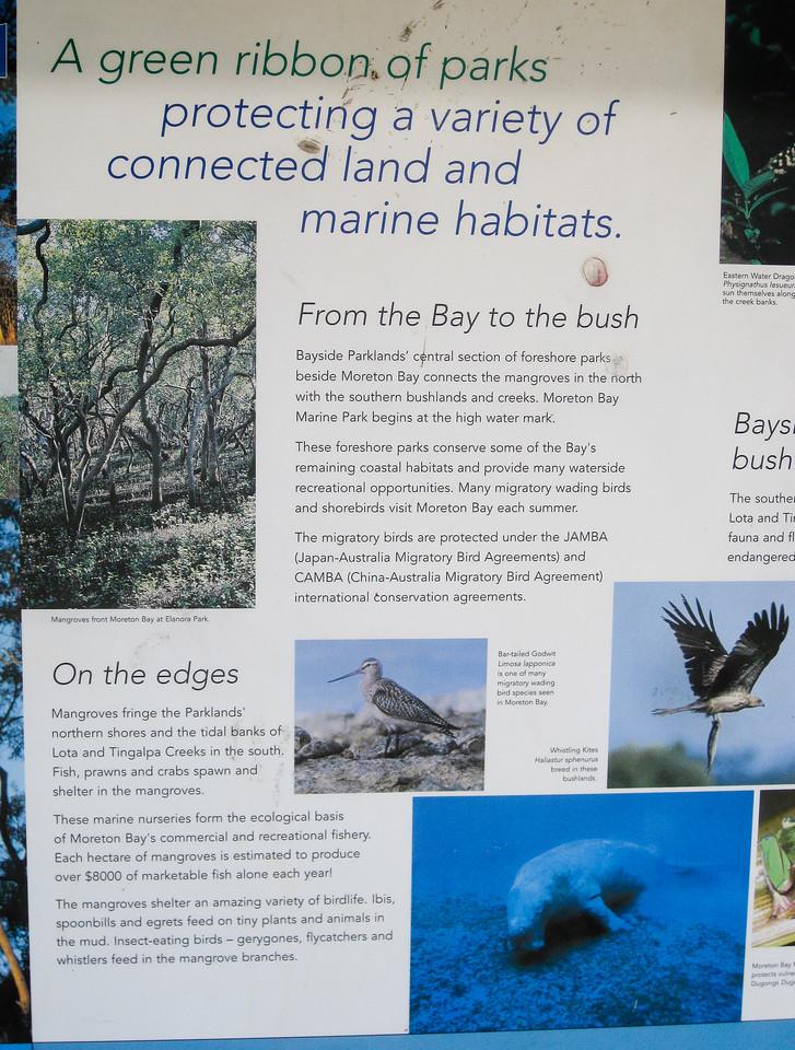 Information - Wynnum Mangrove Boardwalk & Wynnum North Reserve; Wynnum North, Brisbane, Queensland, Australia; 17 October 2012. Photos by Des Thureson