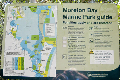 Moreton Bay Marine Park Guide - Map - Information - Wynnum Mangrove Boardwalk & Wynnum North Reserve; Wynnum North, Brisbane, Queensland, Australia; 17 October 2012. Photos by Des Thureson
