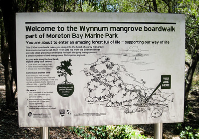 Information - Wynnum Mangrove Boardwalk & Wynnum North Reserve; Wynnum North, Brisbane, Queensland, Australia; 17 October 2012. Photos by Des Thureson