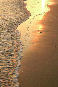 A golden sunset colors the beach, Emerald Isle, NC.