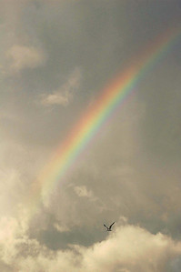 A rainbow in the clouds over Siesta Key, FL.