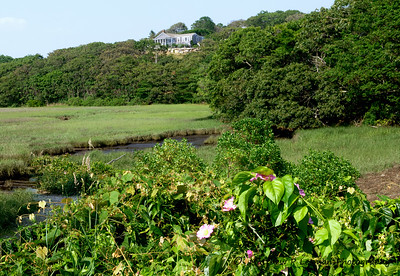 273 Salt Marsh Martha's Vineyard