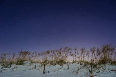 Stars Over A White Sand Beach