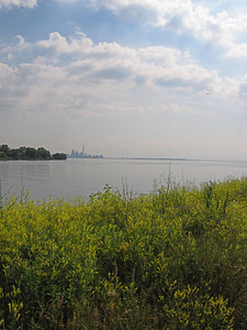 Toronto Skyline from Col. Samuel Smith Park