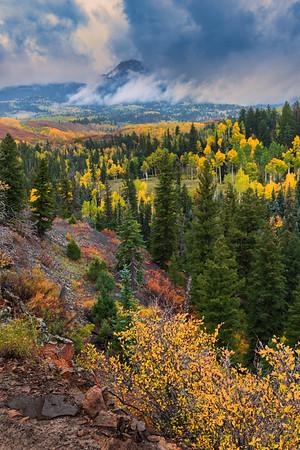 Autumn Valley in the San Juan Mountains