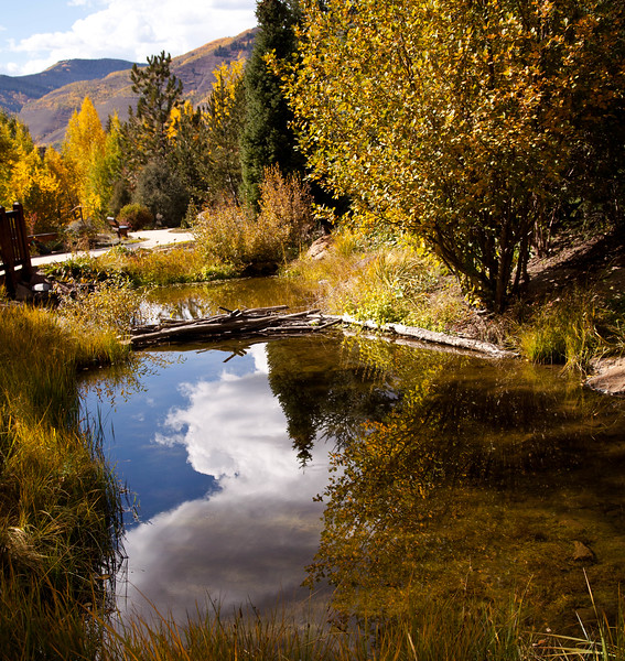Ponds in the Betty Ford Alpine Arboretum, in Vail, Colorado.