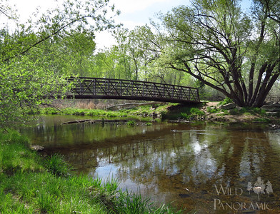 Bear Creek Greenbelt - East