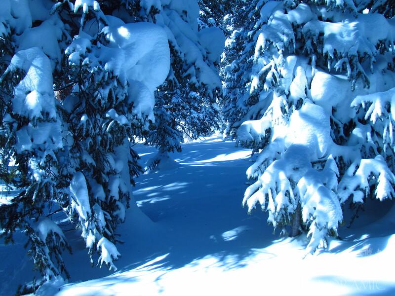 Big snow in tungsten
