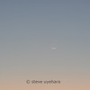 Comet Pan-STARRS and the Moon