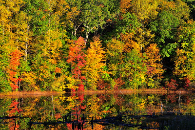 DSC_7328_Copy.  Mitchell Road, East Haddam, CT