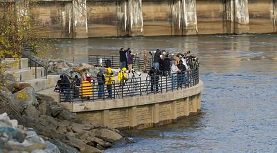 Photographers, Conowingo Dam