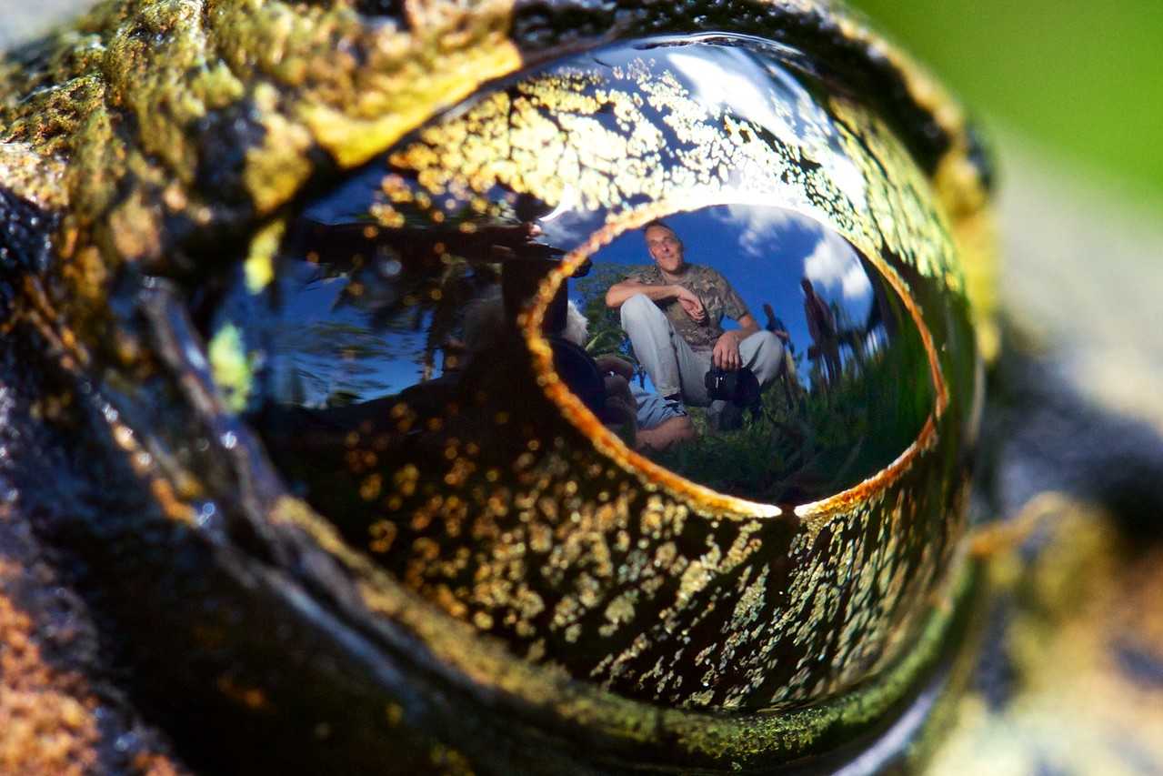 "Close-up of Valiant's frog eye with reflection of Csaba Gődény (known as ""Pelican""), nature guide and photographer working at Luguna del Lagarto and with hidephotography.com. Pelican was the one who set up the four-flash lighting for the hummingbird pictures."