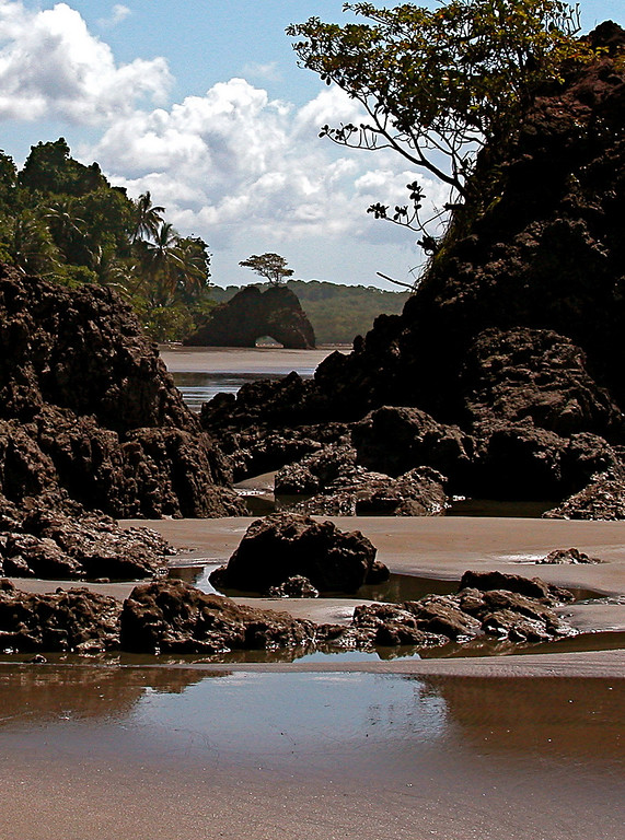 View looking to the south at Playa Llorona, Corcovado Naitonal Park, Osa Peninsula, Costa Rica