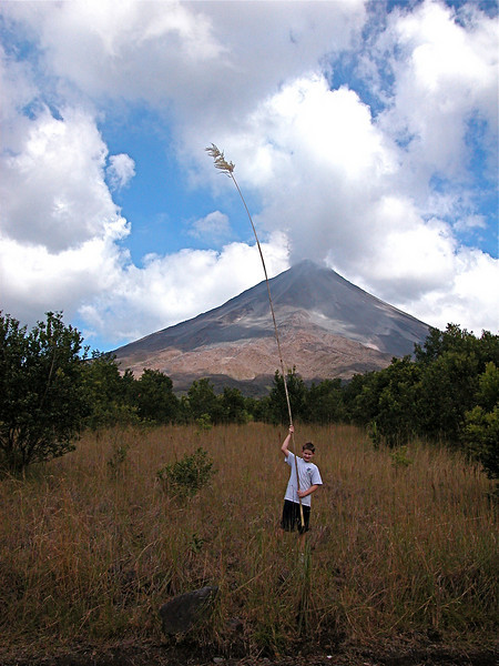 Volcan Arenal, Costa Rica.  Note the height of this grass  growing there on recent lava flows.