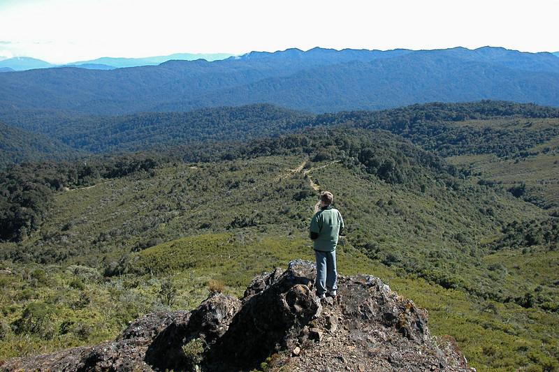 Rocky outcrop just below the peak at Cerro de la Muerte, Costa Rica.
