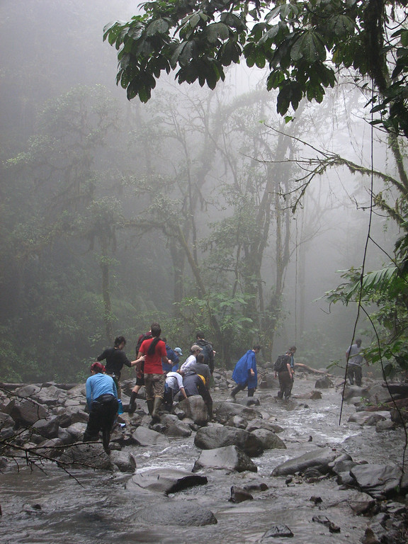 """Hiking in the San Lorencito on a rainy day in Alberto Manuel Brenes Biological Reserve.  One year we carried an injured student on a body board for 3.5 hours in the dark on this """"trail"""".  That was the hardest thing I've ever done."""
