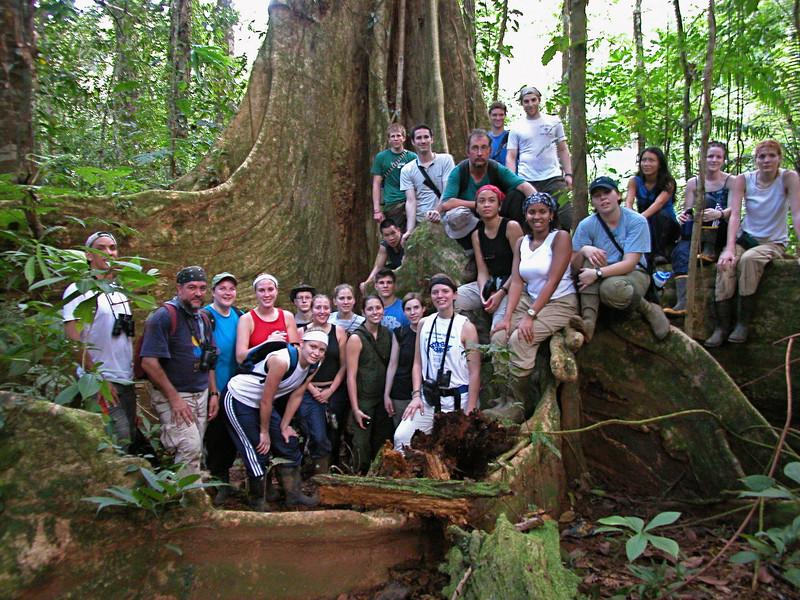 Penn State Biology 499A class group photo on giant buttress tree (Dussia macrophyllata), Campanario, Osa Peninsula, Costa Rica