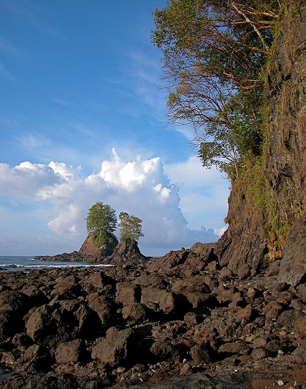 Rocky shore near Playa Llorona, Corcovado National Park, Costa Rica