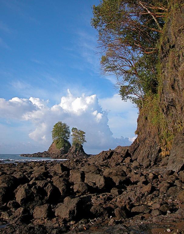 Rocky shore near Playa Llorona, Corcovado National Park, Costa Rica