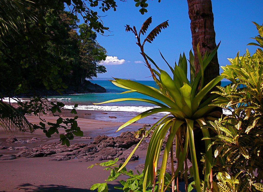Beach at Campanario, Osa Peninsula, Costa Rica