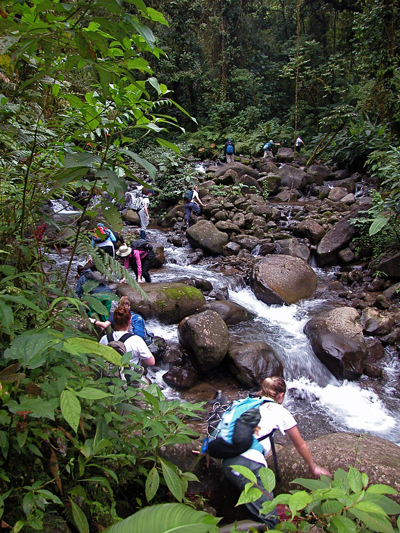 Stream trail, San lorencito river, Alberto Manuel Brenes Biological Reserve, Costa Rica