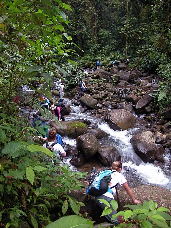 Stream trail, San lorencito river, Alberto Manuel Brenes Biological Reserve, Costa Rica