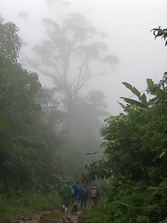 Walking up the very muddy road to Alberto Manuel Brenes Biological Reserve, Costa Rica