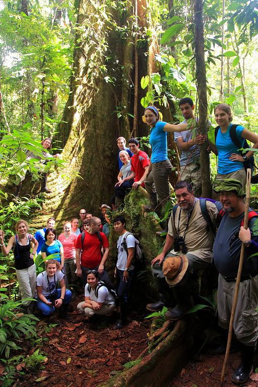 Penn State Biol 499 group photo at the huge buttress tree (Dussia macrophyllata), Campanario, Osa Peninsula, Costa Rica