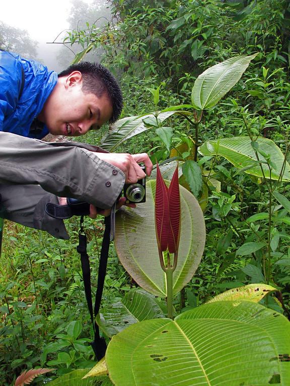 Botanizing, Costa Rica