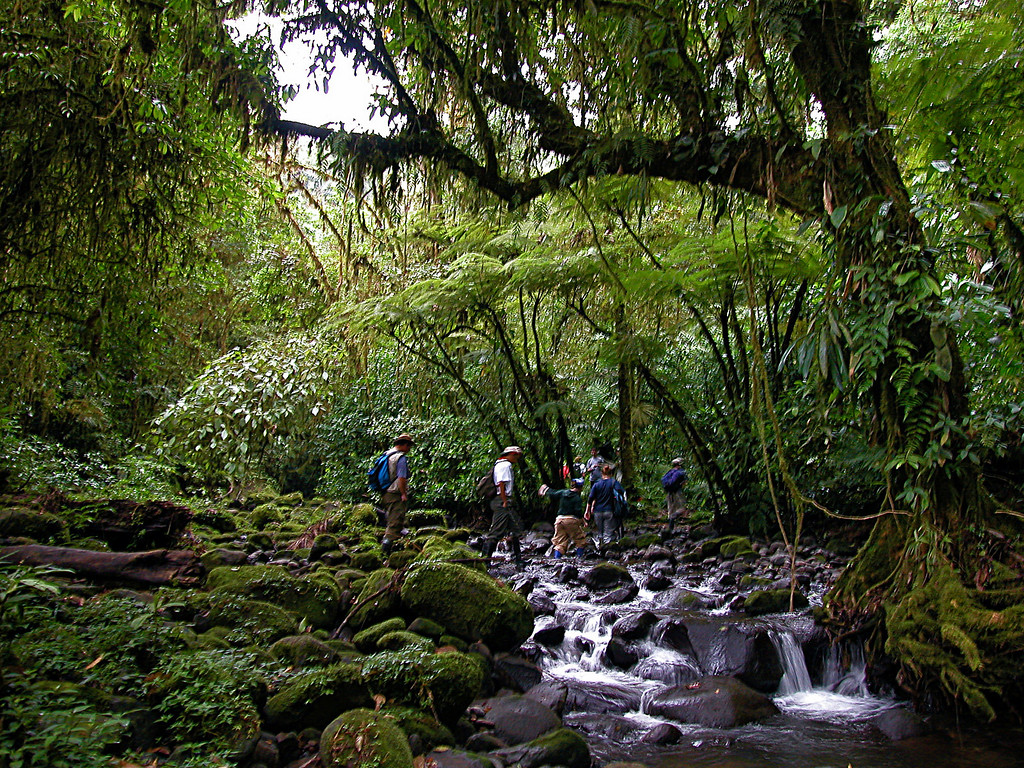 Profs. Oscar Rocha and Eduardo Carrillo cross the San Lorencito in Alberto Manuel Brenes Biological Reserve